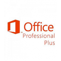 MICROSOFT OfficeProfessionalPlus 2019 Sngl OLP 1Lic NoLevel